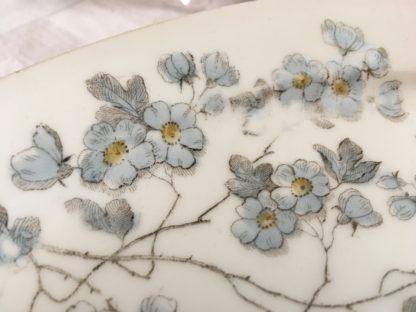 Schaaltje met grijs blauwe bloesem